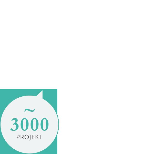 több mint 3000 projekt